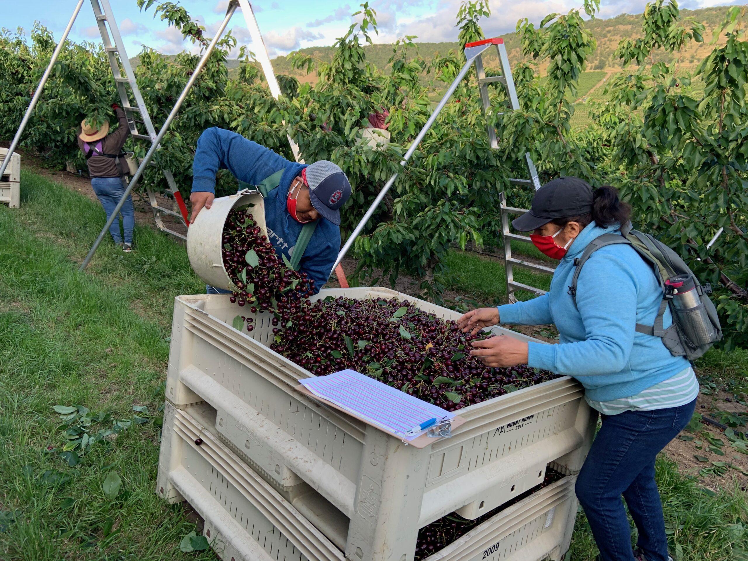 Workers on the periphery - Trabajadores en la periferia