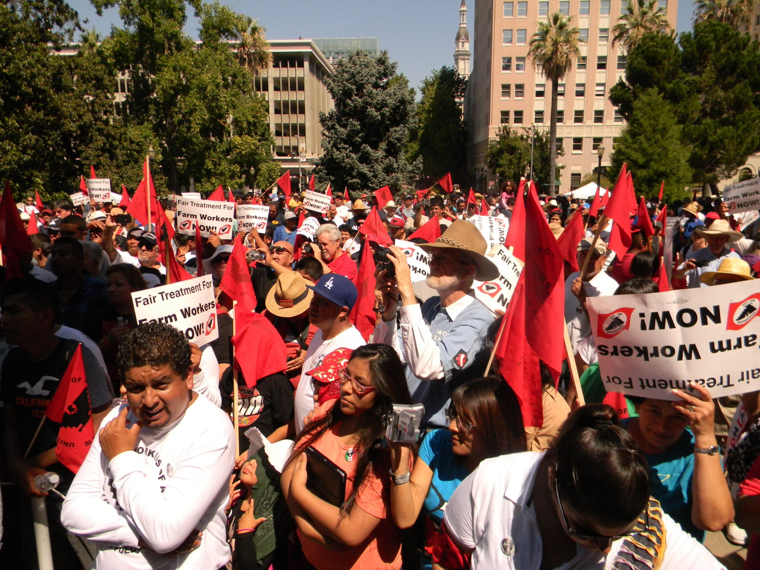 Walking again with Campesinos - Caminando de nuevo con Campesinos
